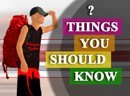 Things You Should To Know